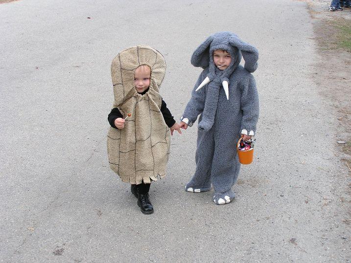elephantpnut.jpg
